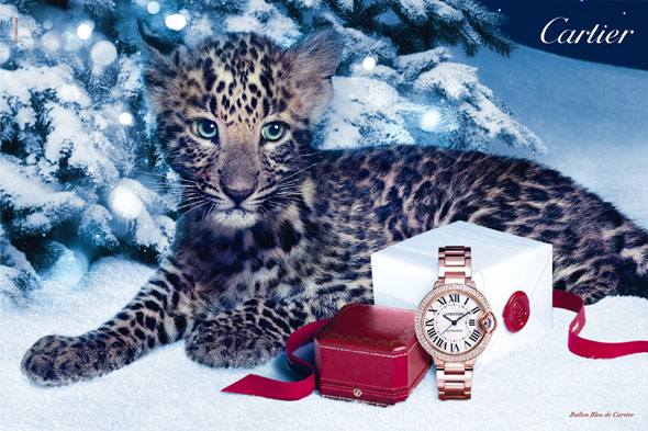 Cartier-Winter-Tale