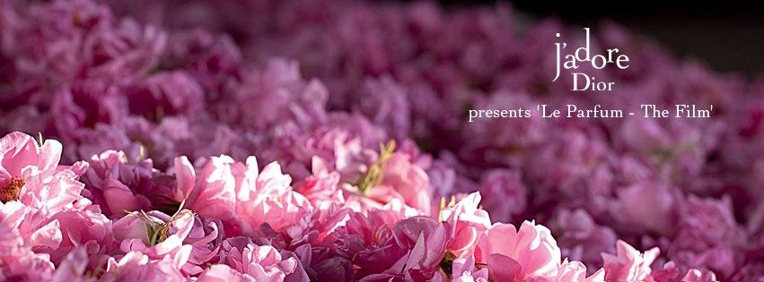 adore - le parfum