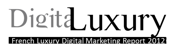 logo-digitaluxury-report